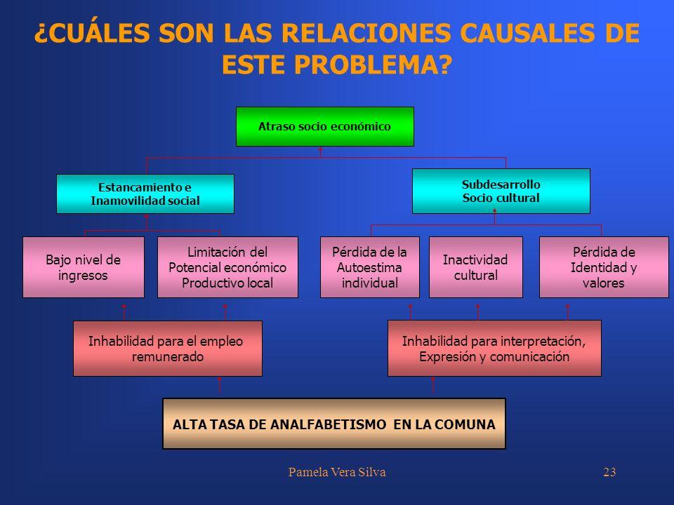 ¿CUÁLES SON LAS RELACIONES CAUSALES DE ESTE PROBLEMA