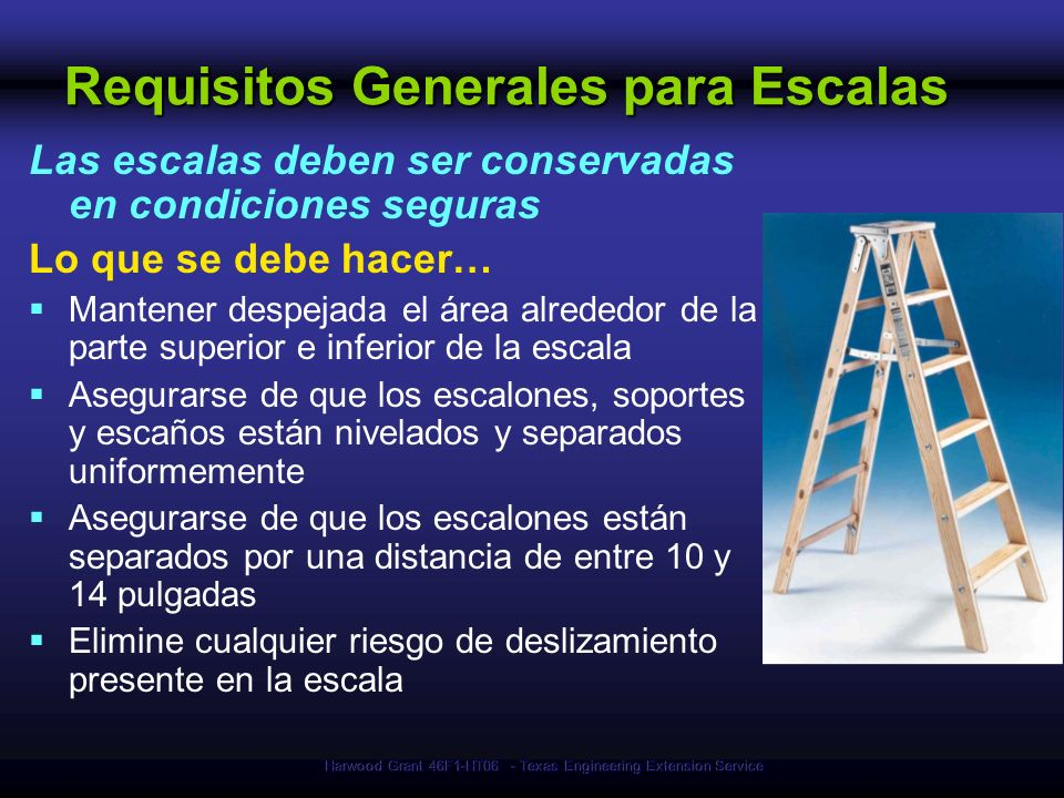 Requisitos Generales para Escalas