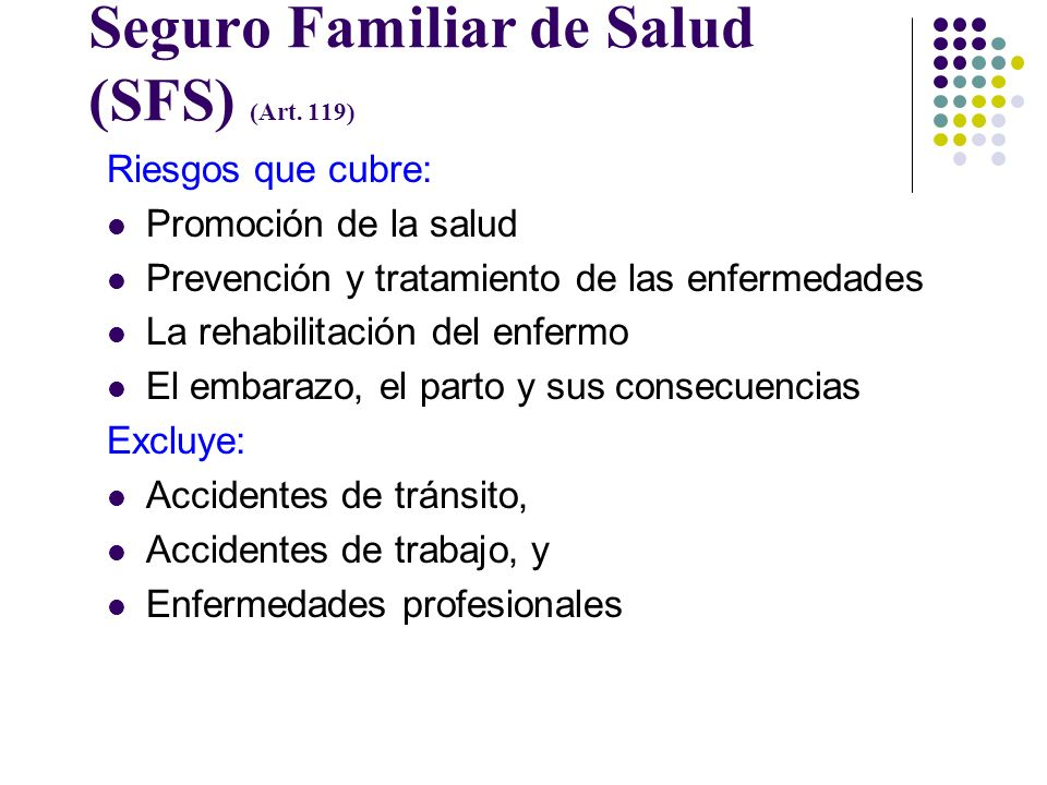 Seguro Familiar de Salud (SFS) (Art. 119)