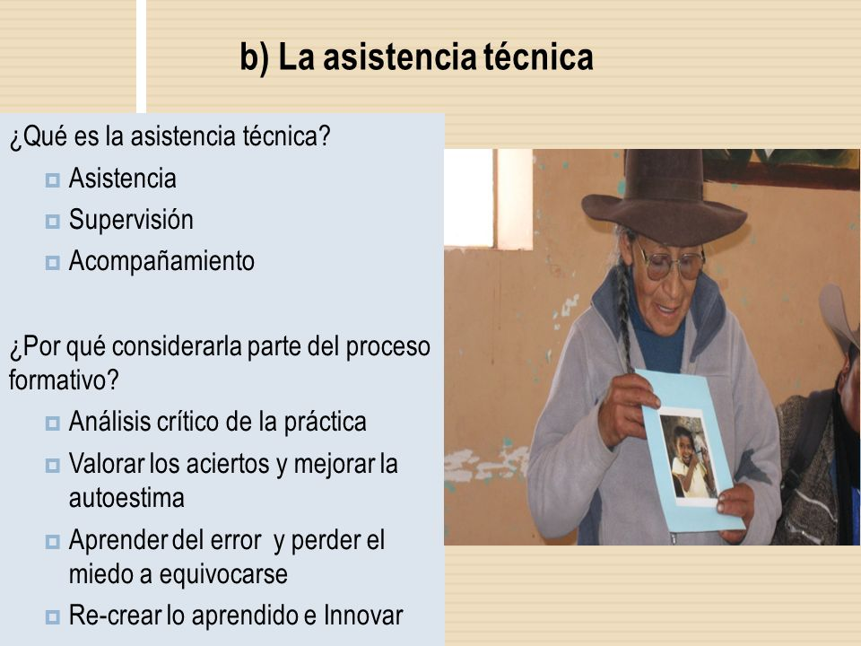 b) La asistencia técnica