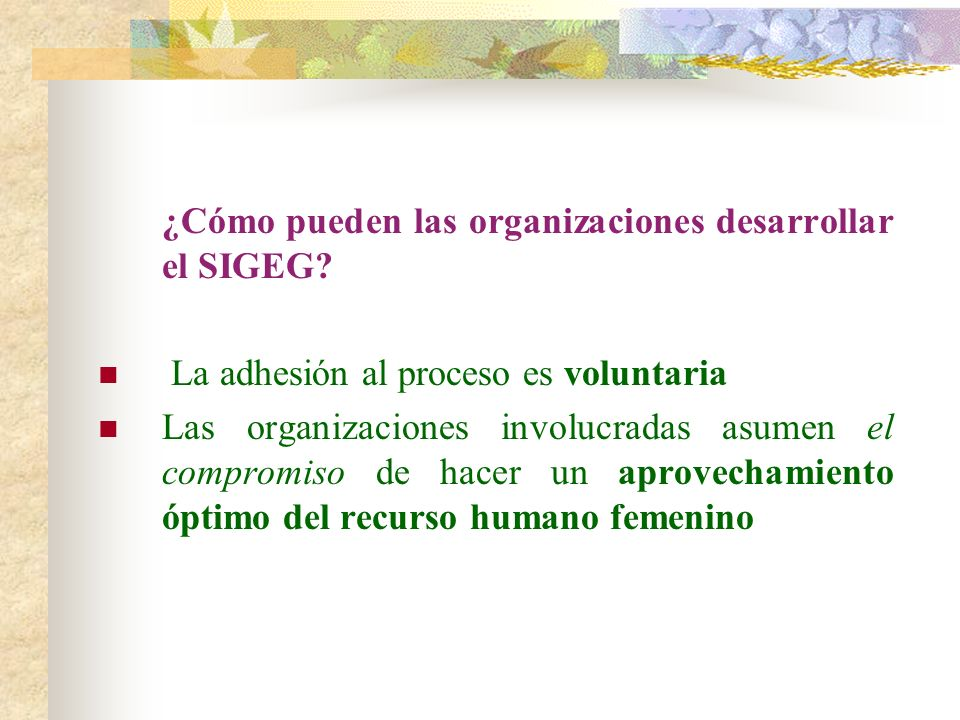 ¿Cómo pueden las organizaciones desarrollar el SIGEG