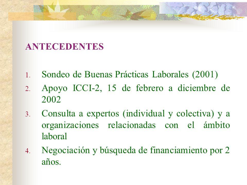 ANTECEDENTES Sondeo de Buenas Prácticas Laborales (2001) Apoyo ICCI-2, 15 de febrero a diciembre de 2002.