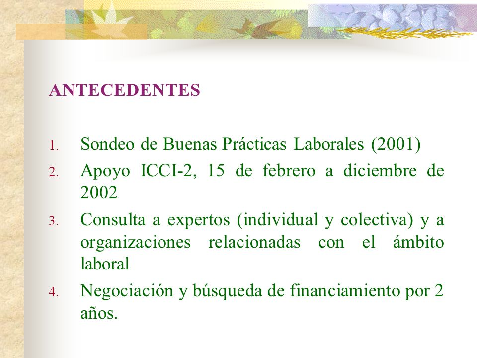 ANTECEDENTESSondeo de Buenas Prácticas Laborales (2001) Apoyo ICCI-2, 15 de febrero a diciembre de 2002.