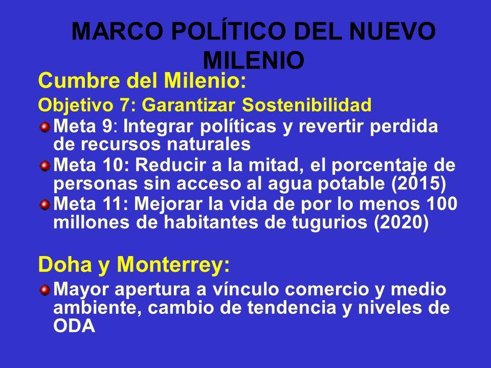 MARCO POLÍTICO DEL NUEVO MILENIO