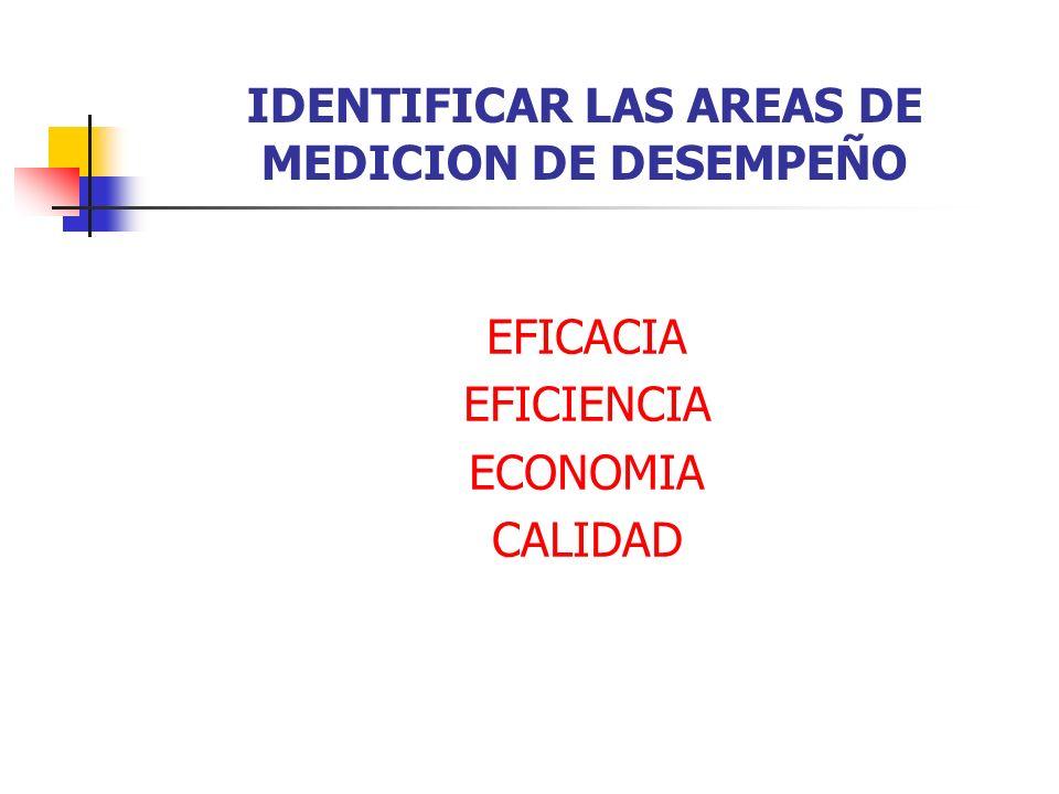 IDENTIFICAR LAS AREAS DE MEDICION DE DESEMPEÑO