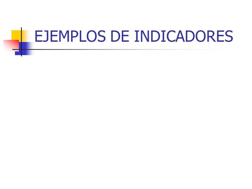 EJEMPLOS DE INDICADORES