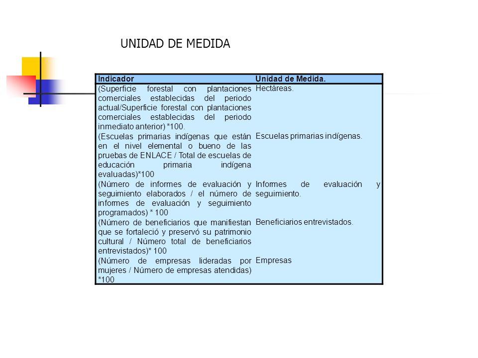 UNIDAD DE MEDIDA Indicador Unidad de Medida.