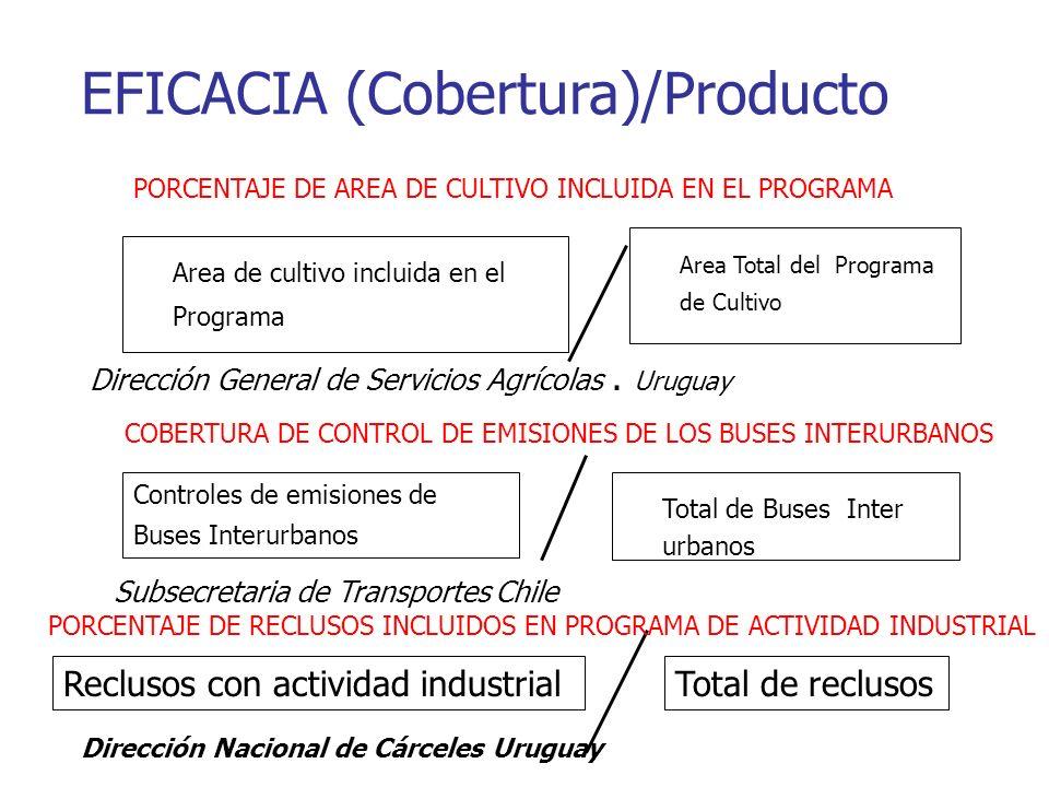 EFICACIA (Cobertura)/Producto