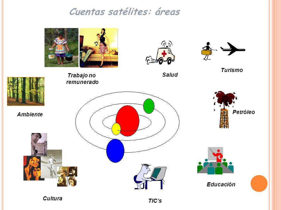 Cuentas satélites: áreas