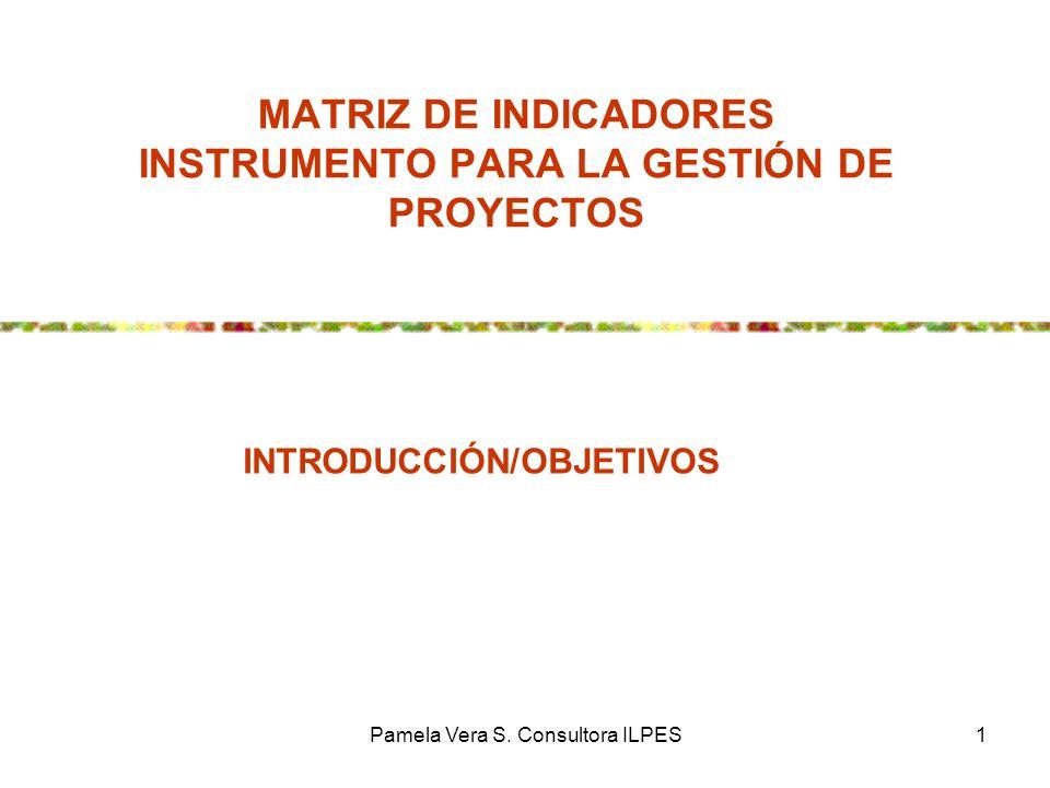 MATRIZ DE INDICADORES INSTRUMENTO PARA LA GESTIÓN DE PROYECTOS