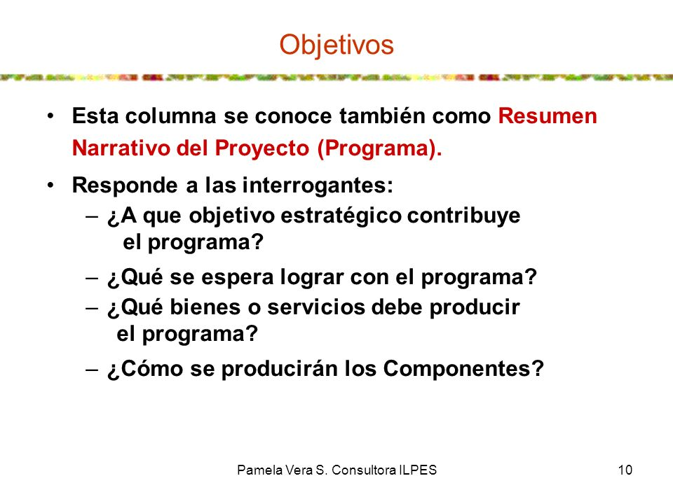 Pamela Vera S. Consultora ILPES