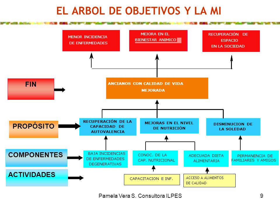 EL ARBOL DE OBJETIVOS Y LA MI