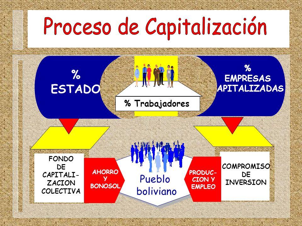 Proceso de Capitalización