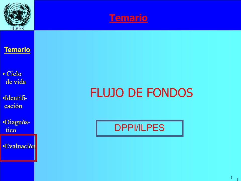 Temario FLUJO DE FONDOS DPPI/ILPES
