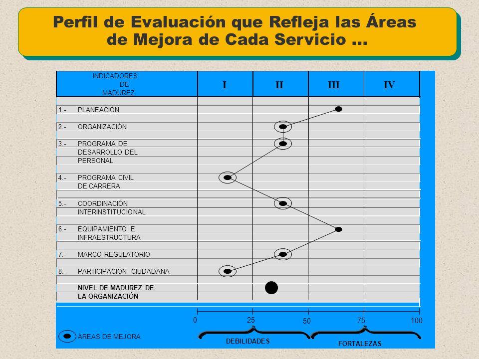 Perfil de Evaluación que Refleja las Áreas de Mejora de Cada Servicio ...