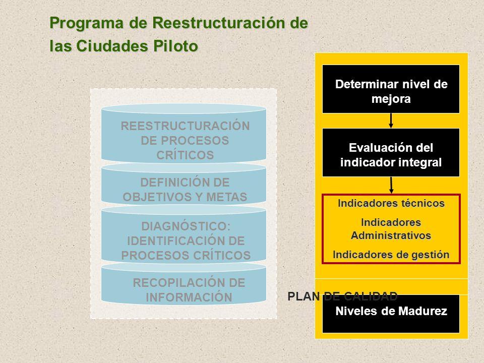 Programa de Reestructuración de las Ciudades Piloto