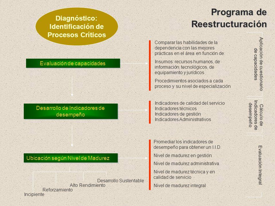Programa de Reestructuración Diagnóstico: Identificación de