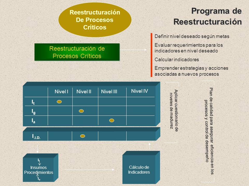 Programa de Reestructuración Reestructuración De Procesos Críticos