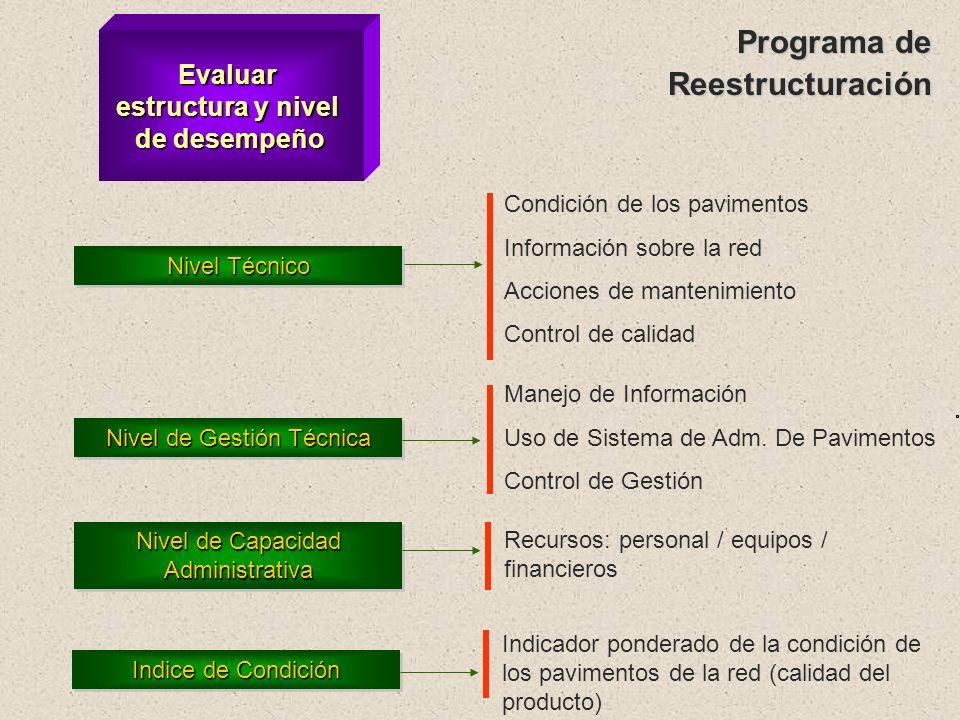 Programa de Reestructuración Evaluar estructura y nivel de desempeño