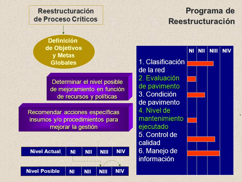 Programa de Reestructuración Reestructuración de Proceso Críticos