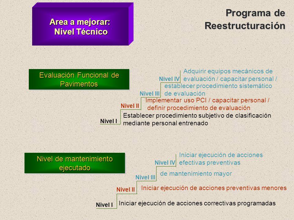 Programa de Reestructuración Area a mejorar: Nivel Técnico
