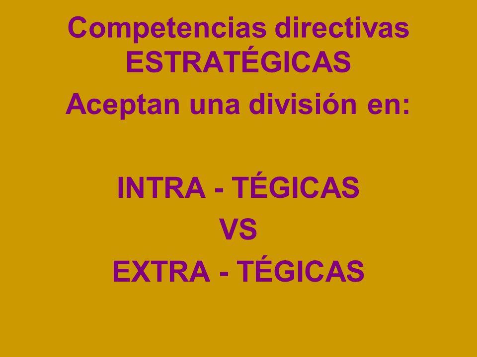Competencias directivas ESTRATÉGICAS