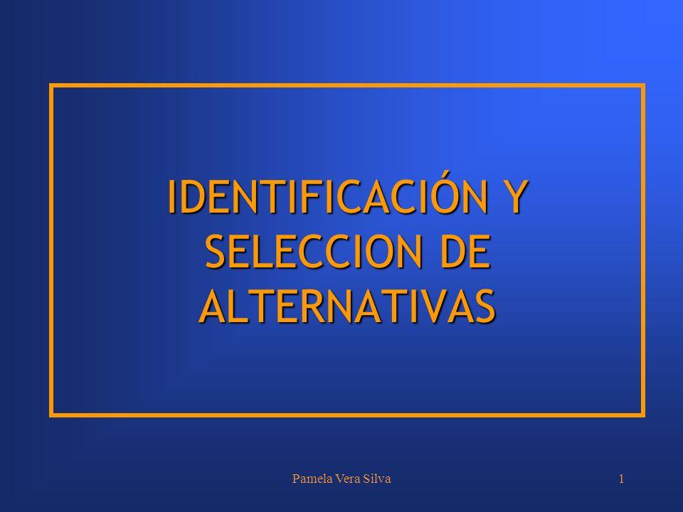 IDENTIFICACIÓN Y SELECCION DE ALTERNATIVAS