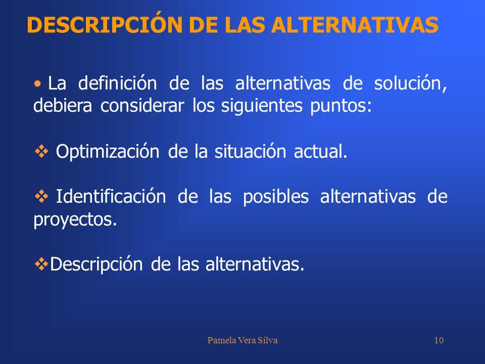 DESCRIPCIÓN DE LAS ALTERNATIVAS