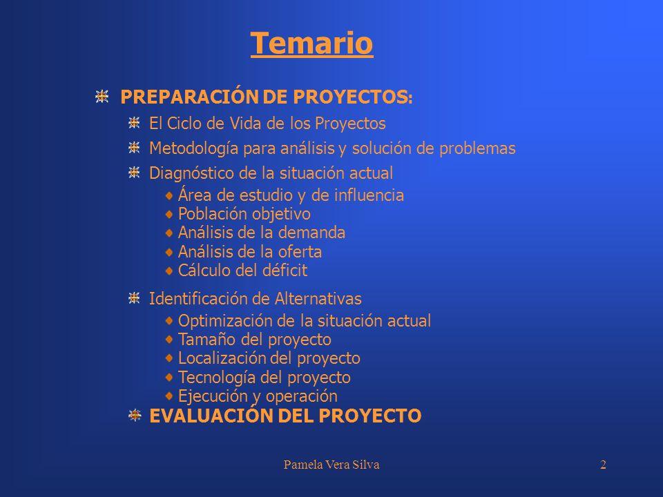 Temario PREPARACIÓN DE PROYECTOS: EVALUACIÓN DEL PROYECTO