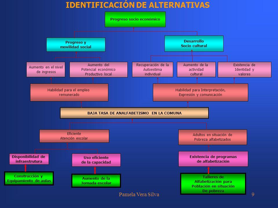 IDENTIFICACIÓN DE ALTERNATIVAS