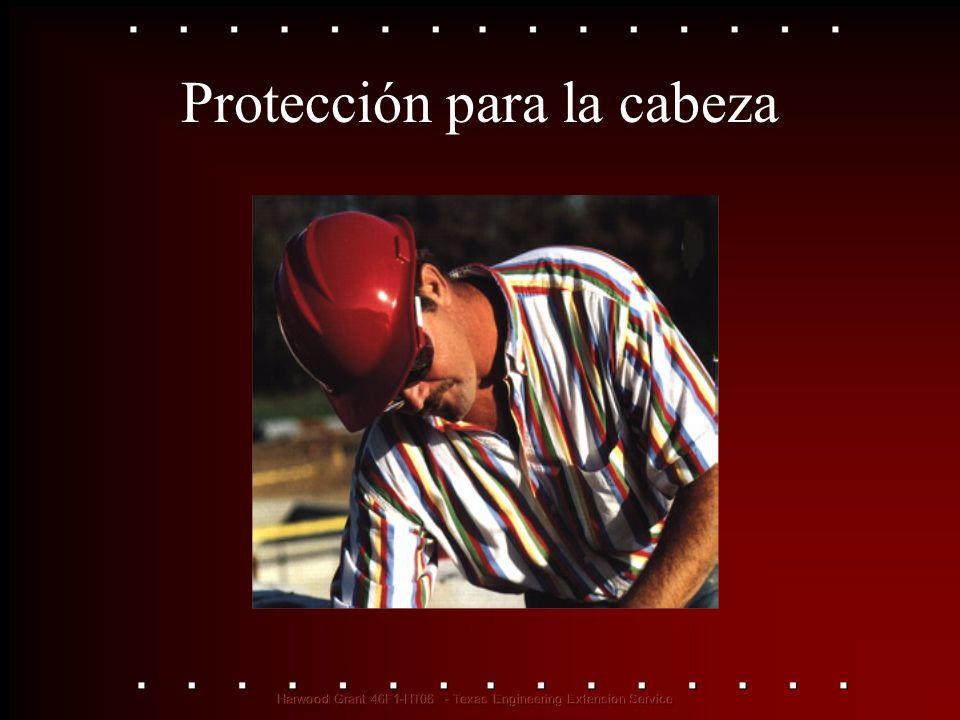 Protección para la cabeza