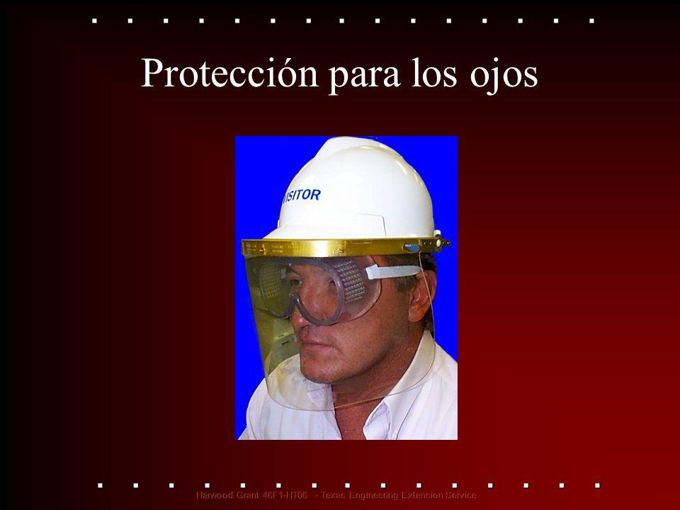 Protección para los ojos