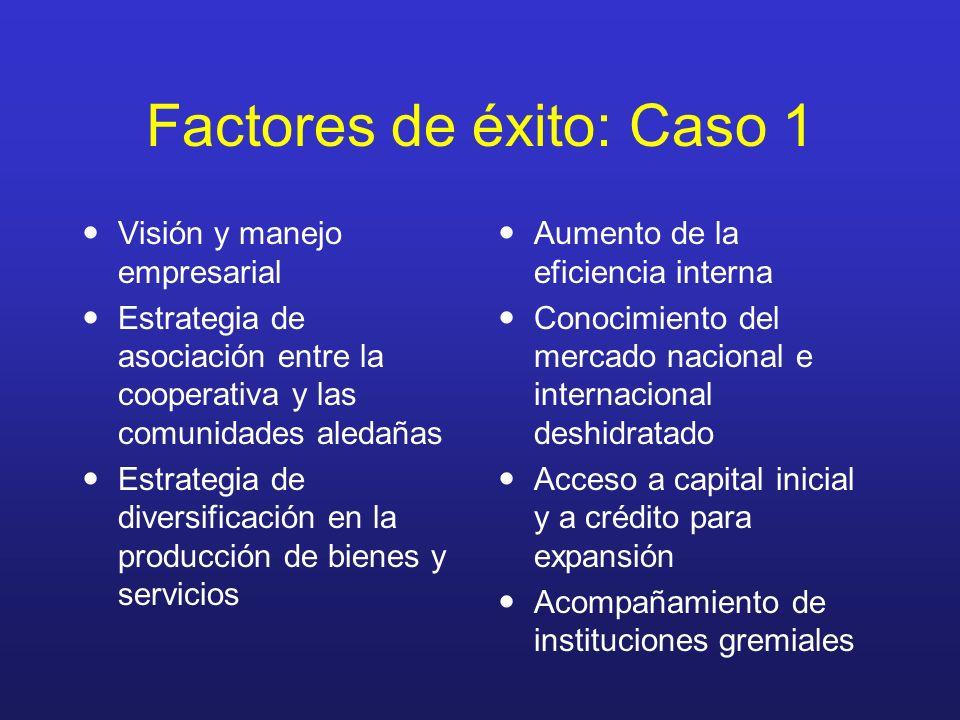 Factores de éxito: Caso 1