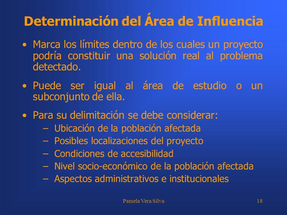 Determinación del Área de Influencia