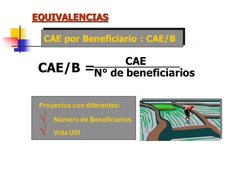 CAE/B = CAE N° de beneficiarios EQUIVALENCIAS