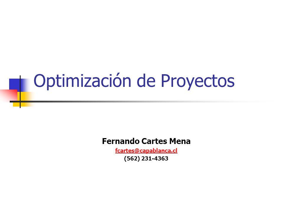 Optimización de Proyectos