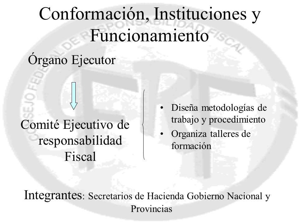 Conformación, Instituciones y Funcionamiento