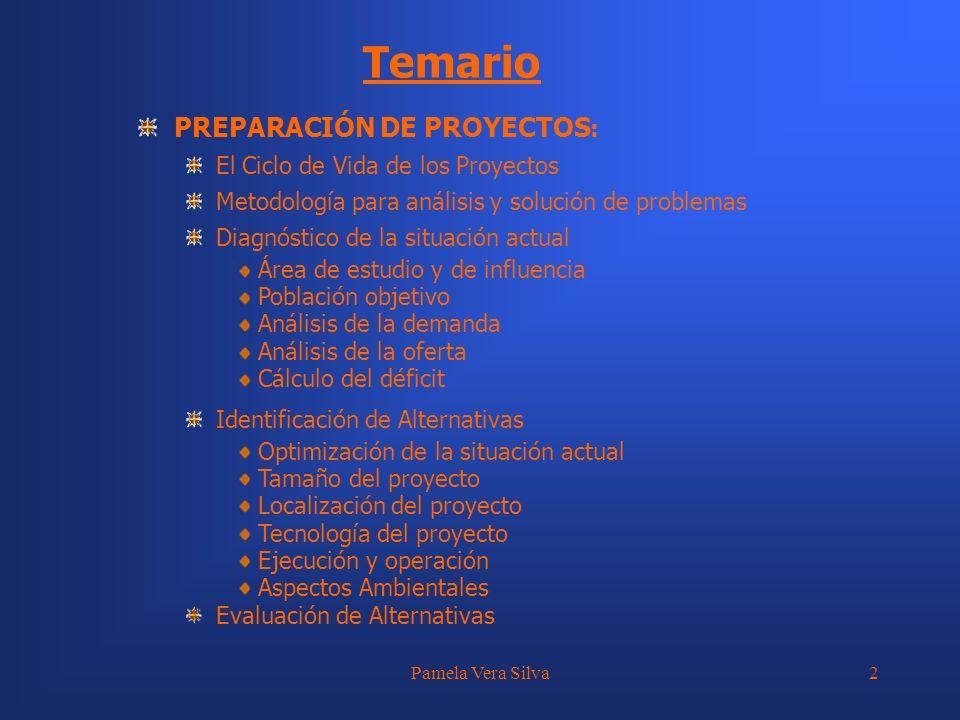 Temario PREPARACIÓN DE PROYECTOS: El Ciclo de Vida de los Proyectos
