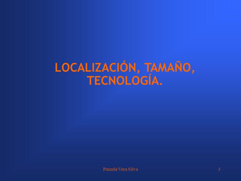 LOCALIZACIÓN, TAMAÑO, TECNOLOGÍA.