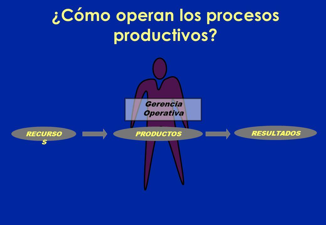 ¿Cómo operan los procesos productivos