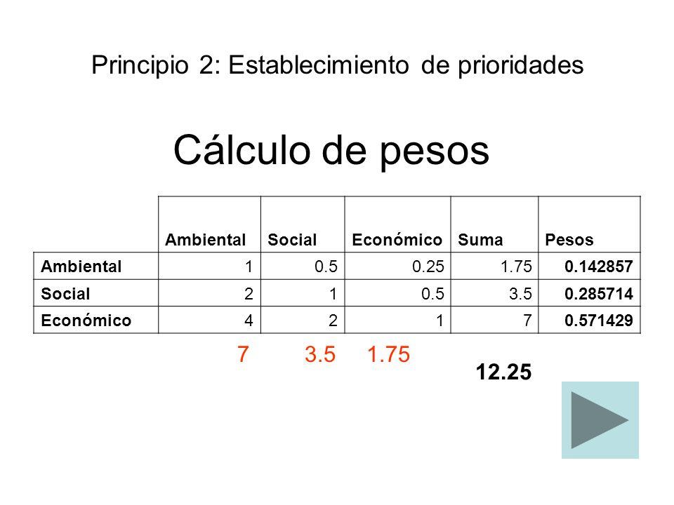 Cálculo de pesos Principio 2: Establecimiento de prioridades 12.25 7