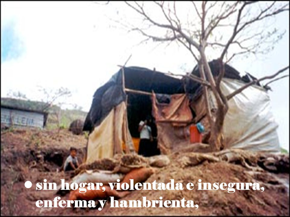 sin hogar, violentada e insegura, enferma y hambrienta,