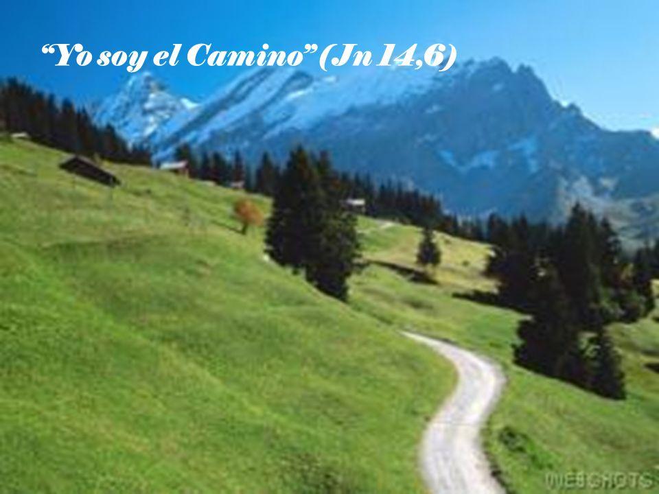 Yo soy el Camino (Jn 14,6)