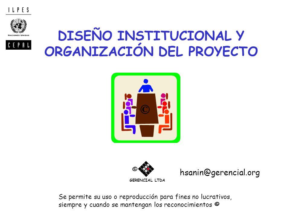 DISEÑO INSTITUCIONAL Y ORGANIZACIÓN DEL PROYECTO