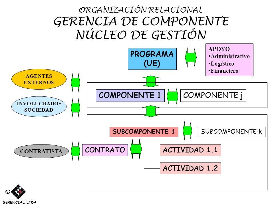 ORGANIZACIÓN RELACIONAL GERENCIA DE COMPONENTE NÚCLEO DE GESTIÓN