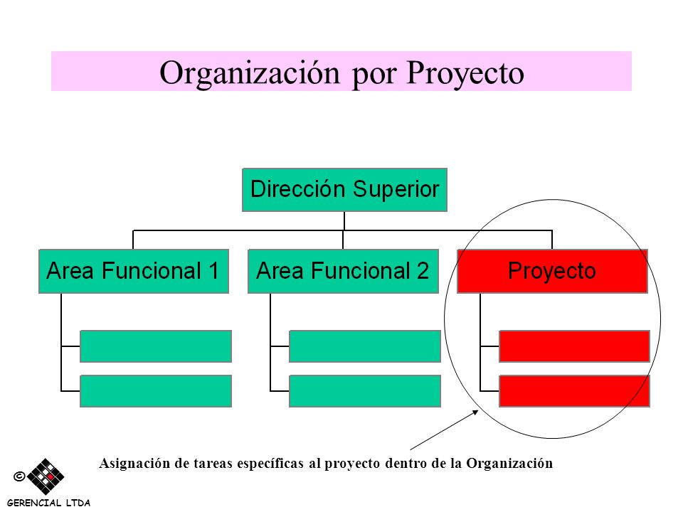Organización por Proyecto