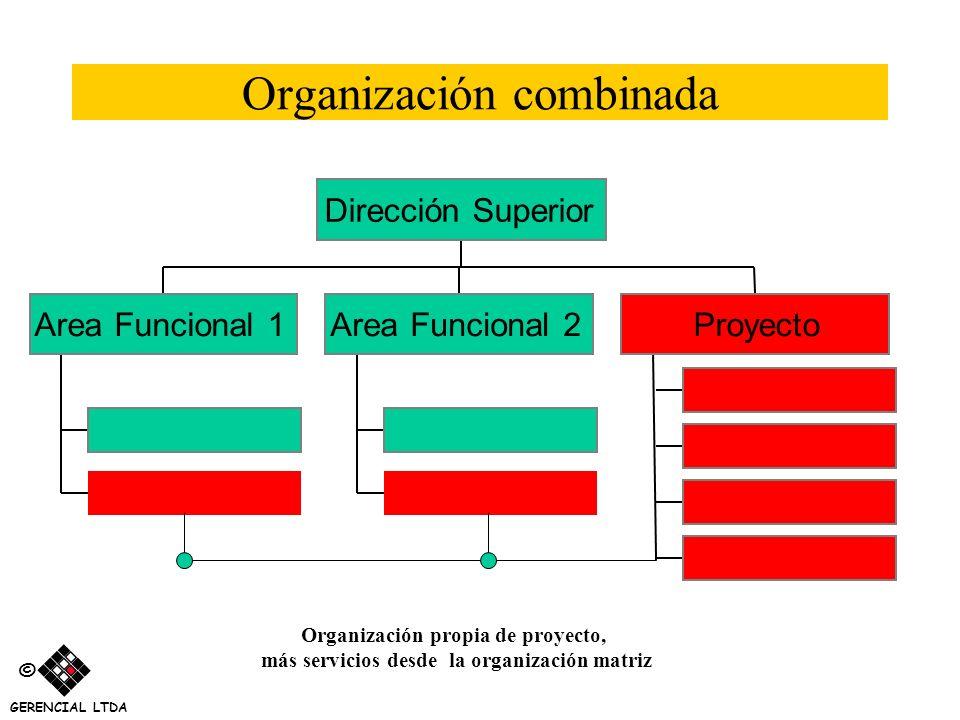 Organización combinada