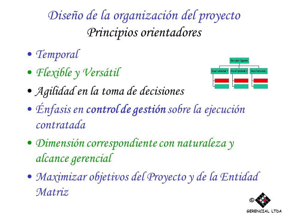 Diseño de la organización del proyecto Principios orientadores