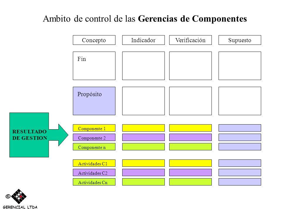 Ambito de control de las Gerencias de Componentes