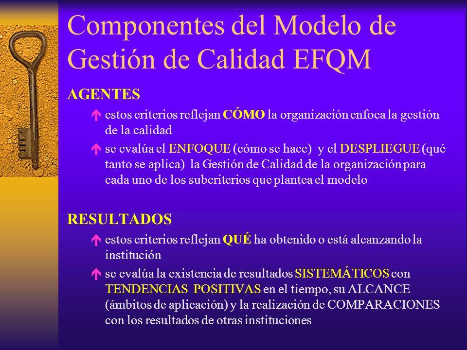 Componentes del Modelo de Gestión de Calidad EFQM